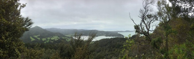 Fletcher Lookout